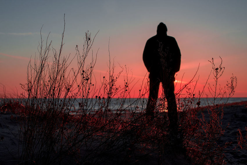 Baltic Sea Beach Beauty In Nature Full Length Holiday Landscape Lifestyles Men Nature One Man Only One Person Real People Rear View Red Light Red Sunset Relaxing Scenics Silhouette Sky Standing Sunset Tranquility Trawel Tree Vacations Long Goodbye TCPM Live For The Story