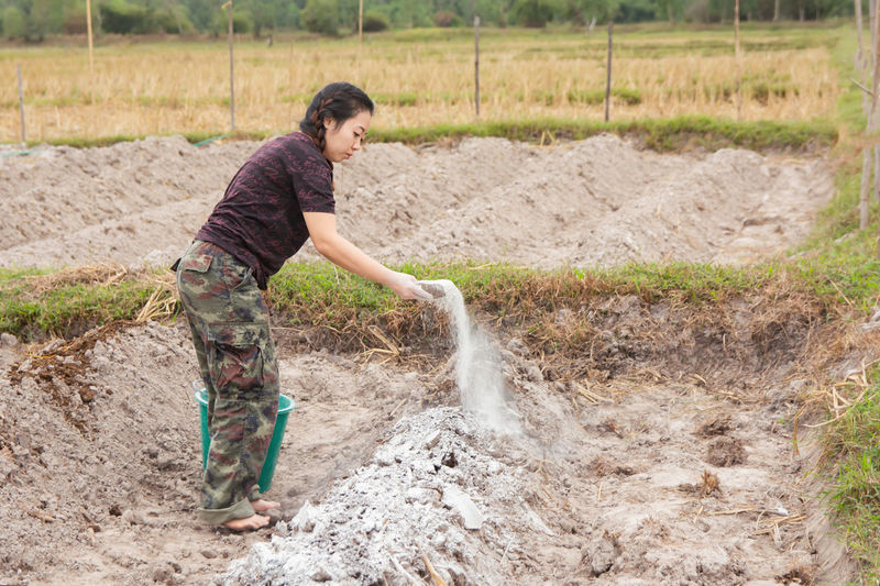 Woman putting fertilizer while standing on agricultural field