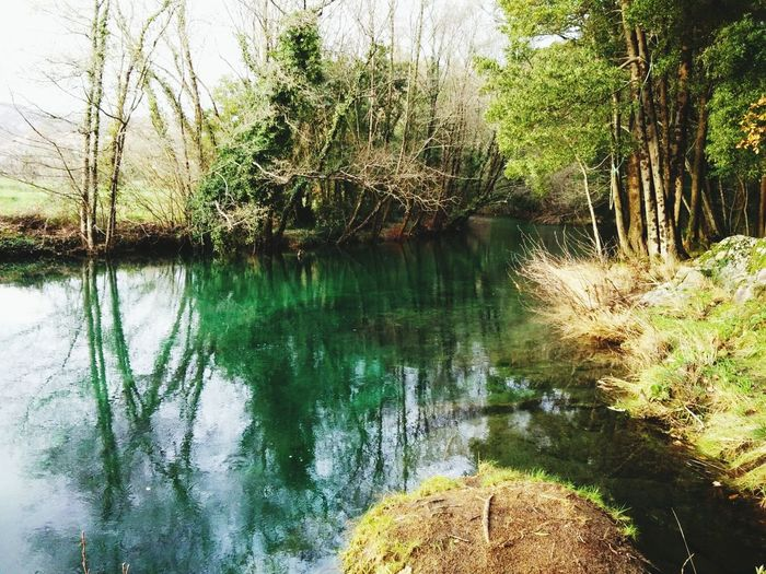 SPAIN Galicia Natural Green  Natural Photography Natural River Natural Space
