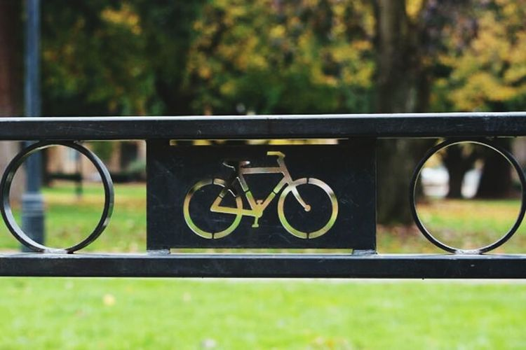 Bicycle, Urban Transportation, Urban Art Public Art, The OO Mission