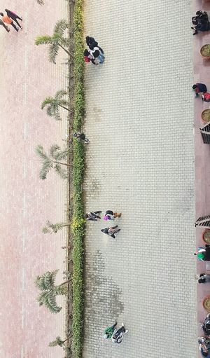 High Angle View Day Outdoors Large Group Of People Nature Architecture Drone  People