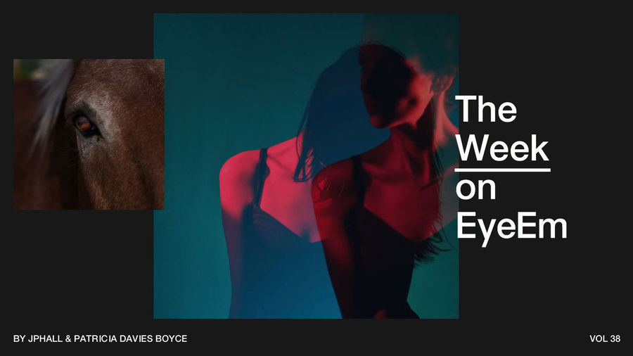 #TheWeekOnEyeEm: Have a look at the most outstanding photography of the week → http://eyeem.ai/2wLMFzV