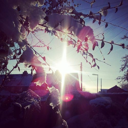 Aint the out doors purttyy lol :P Walking School Sun Snow sexybranch :P