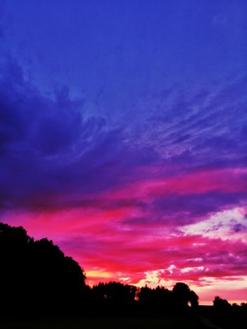 Multi Colored Sunset Nature Dramatic Sky Silhouette Tree Scenics Landscape No People Purple Beauty In Nature Tranquil Scene Red Outdoors Sky Forest Tree Area Sunset Photography Dusk Rural Landscape Dramatic Sky Playing With Colours Beauty In Nature Nature Tree