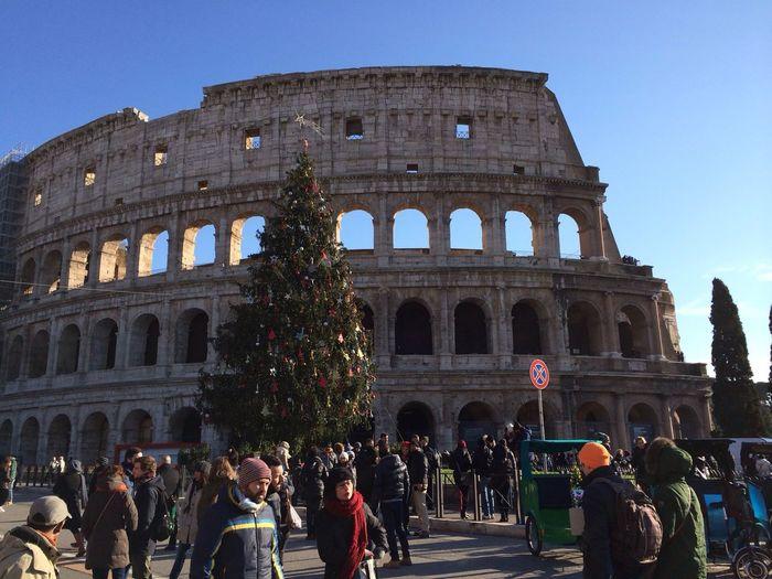Colosseo Happynewyear2015 Christmas Tree Enjoying Life ???????