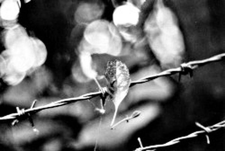Taken on film