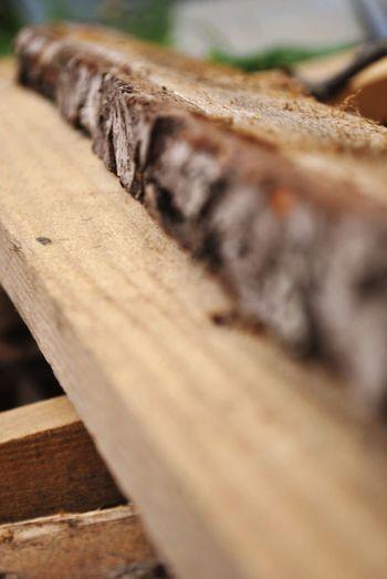Woooood Wood