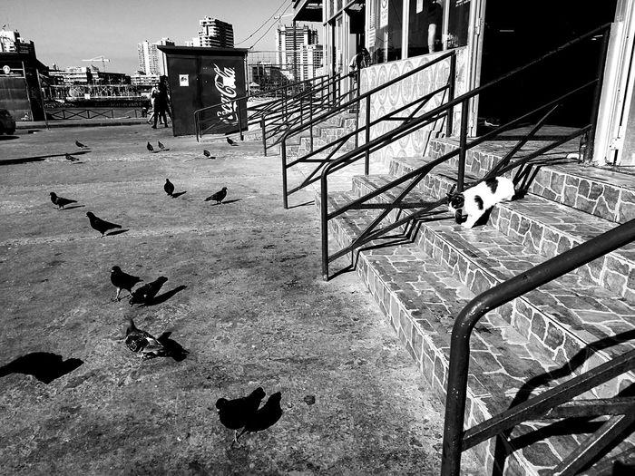 Antofagasta terminalpesquero First Eyeem Photo