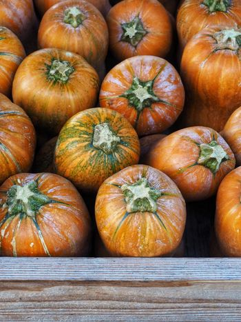 EyeEm Selects Pumpkin Vegetable Food And Drink Orange Color Healthy Eating Food Freshness No People Squash - Vegetable Abundance Market Backgrounds Agriculture Healthy Lifestyle Day Close-up Halloween Outdoors