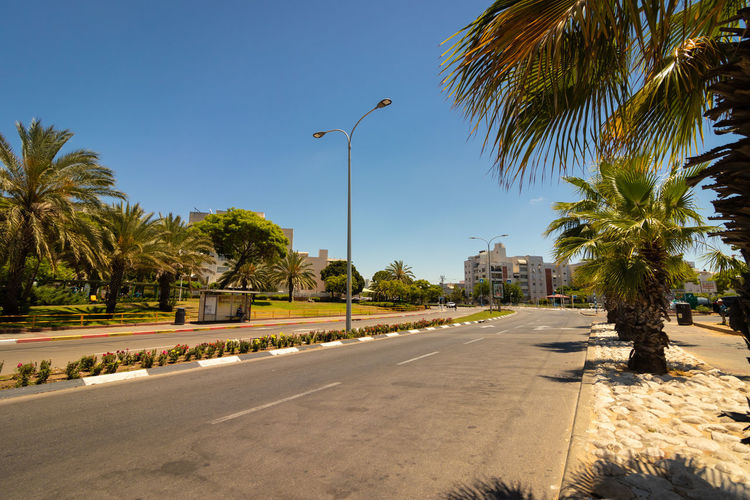 Road by palm trees against clear sky