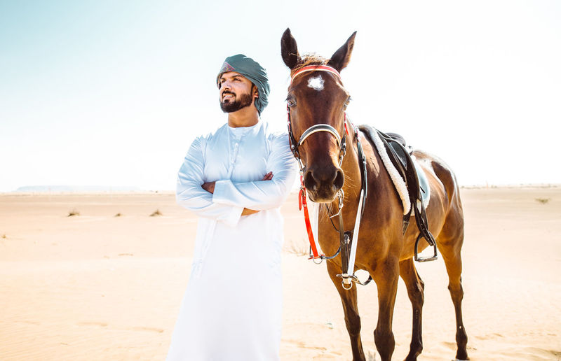 View of a horse on desert