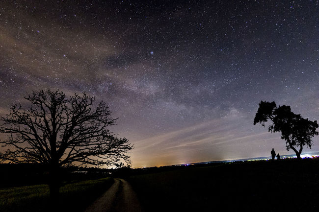 Milkyway Landscape composing Star - Space Night Astronomy Silhouette Sky Tree Milky Way Star Field Scenics Beauty In Nature Galaxy Nature Constellation Space Tranquility Low Angle View Landscape Outdoors Star Trail ARTsbyXD No People Deutschland EyeEm Best Shots Bavaria The Great Outdoors - 2017 EyeEm Awards EyeEm Selects Sommergefühle
