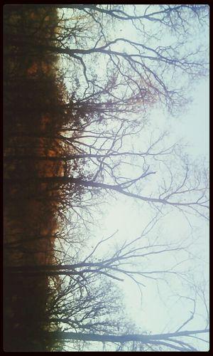 when the moon met the sun. ✨ Relaxing Enjoying The Sun