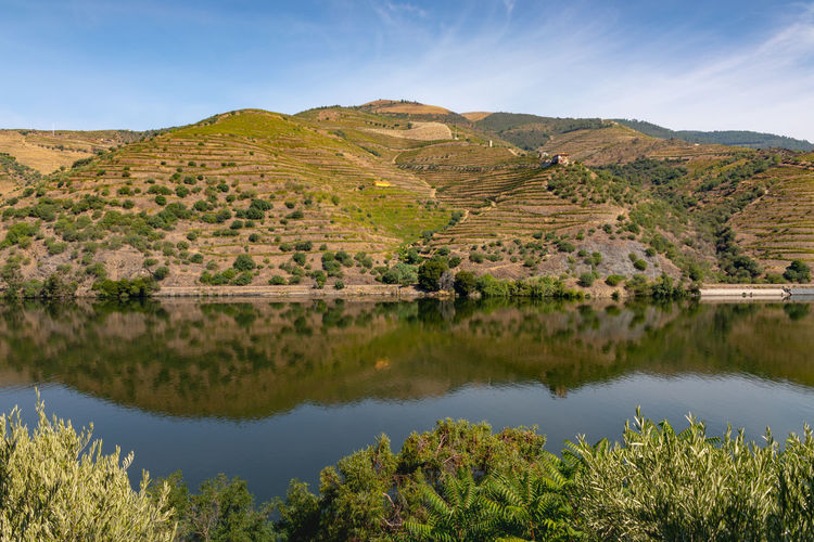 River Douro reflection 2 Beauty In Nature Day Environment Green Color Idyllic Lake Landscape Mountain Mountain Range Nature No People Non-urban Scene Outdoors Plant Reflection Scenics - Nature Sky Tranquil Scene Tranquility Tree Water