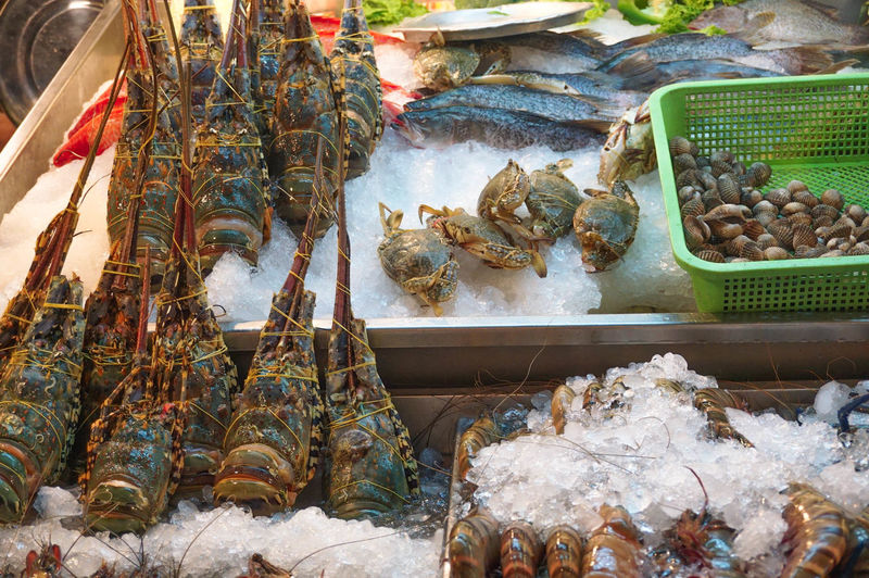 High angle view of seafood for sale in market