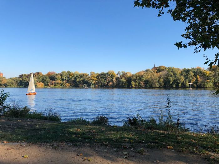 Autumn Autumn colors Potsdam IPhone X Photography Germany IPhone X Havel Water Tree Plant Sky Lake Clear Sky Tranquility Beauty In Nature Nature Scenics - Nature Tranquil Scene Copy Space No People Non-urban Scene Day Growth Reflection Blue Outdoors