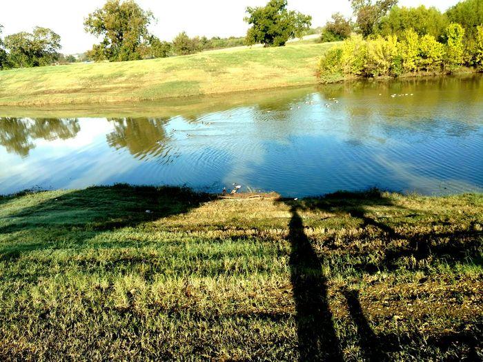 Walking Around Morningwalkies Twolongshadows Look:duckies! Prettyday