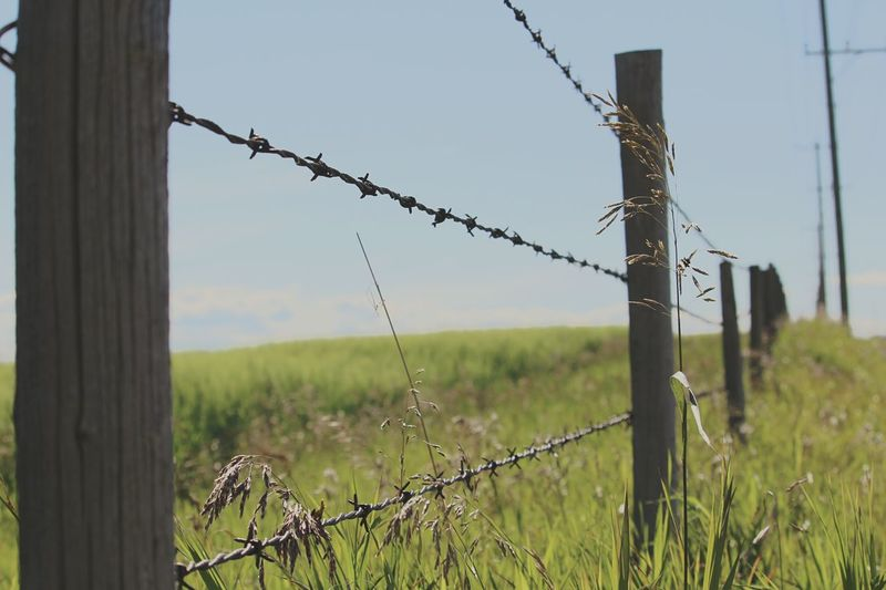Barbed Wire Fence Fields Land Airdrie Alberta Beautiful