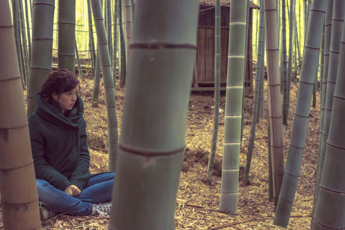 Autumn Bamboo - Plant Beautiful Girl Beauty Casual Casual Clothing Contemplating Day Foliage Forest Girl Japan Jeans Lifestyles Meditating Nature One Person Outdoors People Plants Real People Sitting Woman Young Adult Young Women