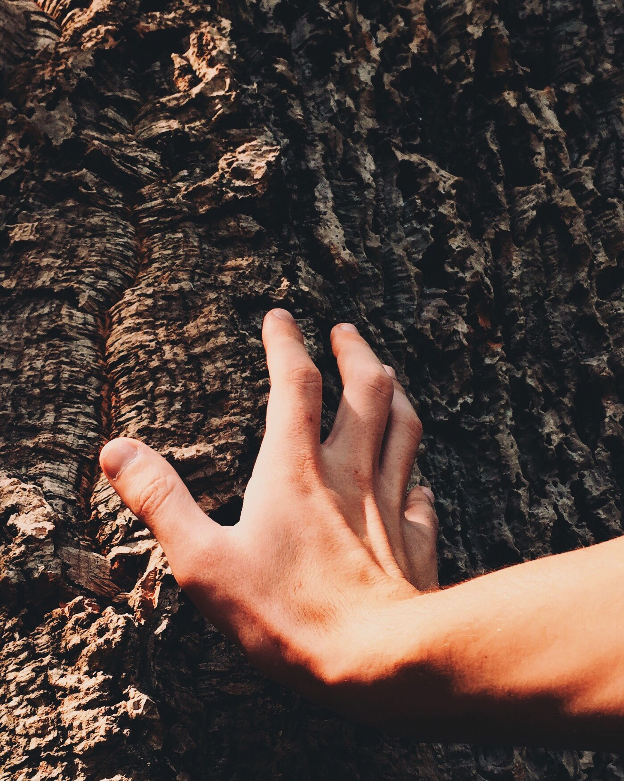 person, part of, personal perspective, lifestyles, human finger, low section, barefoot, human foot, touching, cropped, leisure activity, unrecognizable person, close-up, high angle view, men