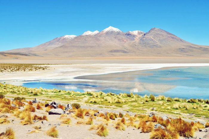 Bolivia Bolivia Landscape Mountain Beauty In Nature Scenics Blue Nature Outdoors Tranquil Scene Lake Sky No People Lagoon Clear Water Clear Sky