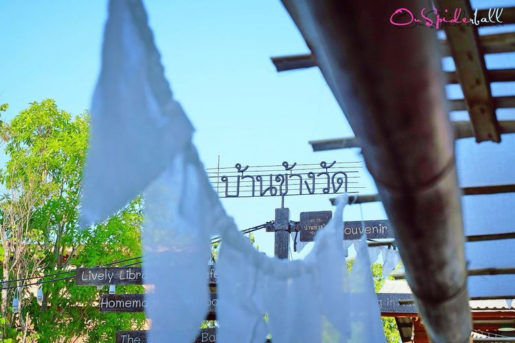 Chiang Mai | Thailand Photographic Memory EyeEm Thailand A Day In Thailand Fujifilm_xseries Fujifilm XA2 Enjoying Life Happy Time (null)Walking Around Thailand Thailand_allshots