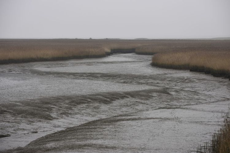 Groningen Cold Temperature Day Landscape Nature No People Outdoors Waddenkust Winter