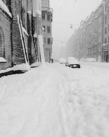 Winter Snow Cold Temperature Weather Building Exterior Architecture Outdoors Day City Ig_stockholm Ig_captures Buildings Snowflakes Winter Wonderland Mode Of Transport Transportation Snowy Days... Steeet Photography Street Photography Streetphoto_bw Stockholm, Sweden Stockholm.se Houses Vasastan EyeEm Gallery