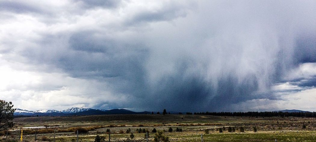 Rain from afar Weather Cloud - Sky Nature Storm Cloud Sky Beauty In Nature Scenics Thunderstorm No People Landscape Outdoors Mountain Extreme Weather Storm Power In Nature Day Martis Valley Tahoe Truckee