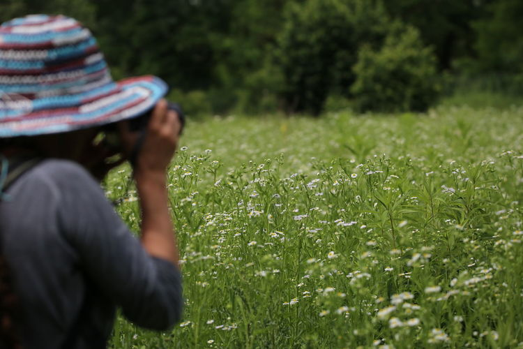 Birdwatching Photographer Lands Margherita Sun Hat Human Hand Flower Women Childhood Rear View City Rural Scene Grass Flower Head Photographic Equipment Digital Camera Camera