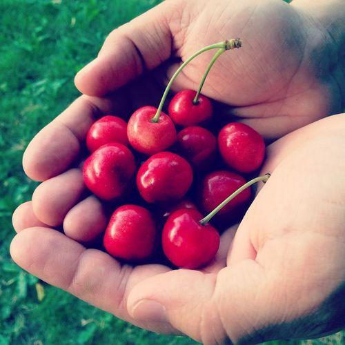 Cherries Cherry