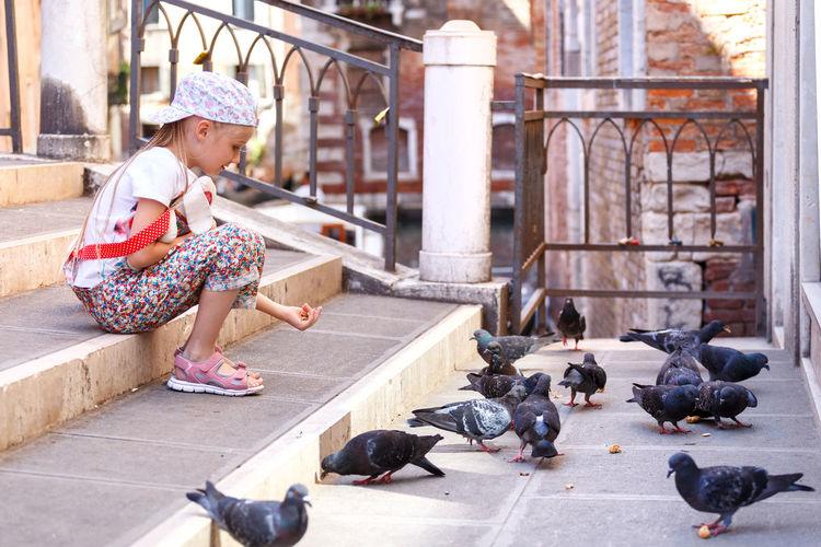 Full length of boy feeding birds