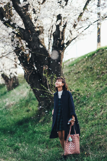 Falling Sakura Plant Tree Real People One Person Grass Land Young Adult Tree Trunk Trunk Nature Lifestyles Field Young Women Leisure Activity Day Standing Women Front View Outdoors Beautiful Woman Hairstyle Sakura Sakura Blossom Sakura Trees