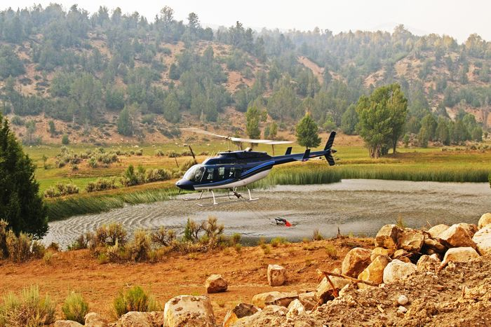 Firefighting Helicopter Forest Fire Flying Water Utah Zion National Park Chamberlain Ranch Aircraft FireFighting