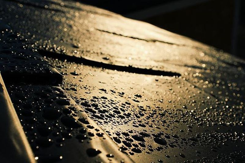 Rain can make just about anything look nice Photographer Photography Artsy Sunset Landscape Myphoto L4l Instagood VisitNovaScotia Novascotia Thankyoucanada Water Rain Dew Drops Canon CanonT5 Imisssummer Photo