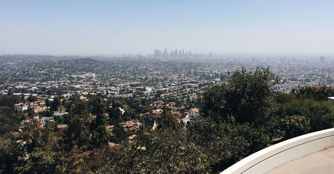 The City Light Cityscape City Clear Sky Outdoors Sky Losangeles Colour Your Horizn California Dreamin