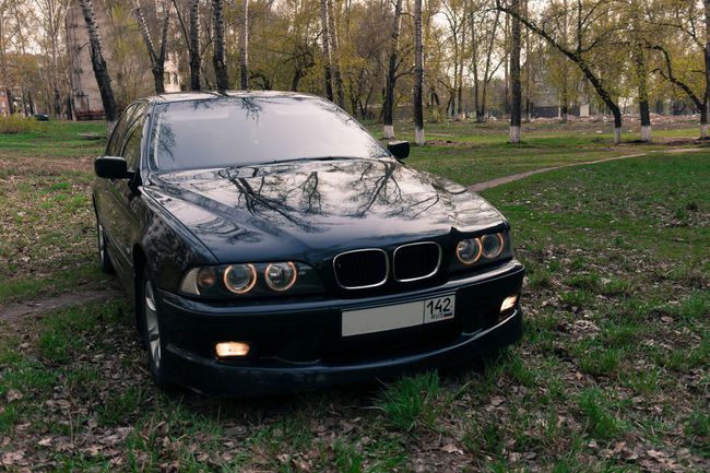 Park Trees Car Black Car Novokuznetsk Kuzbass Siberia Russia