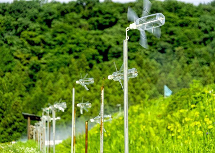 Idyll Spring2015 Spring Landscape Windmills Moving On Revolver Hanging Out Enjoying Life Taking Photos