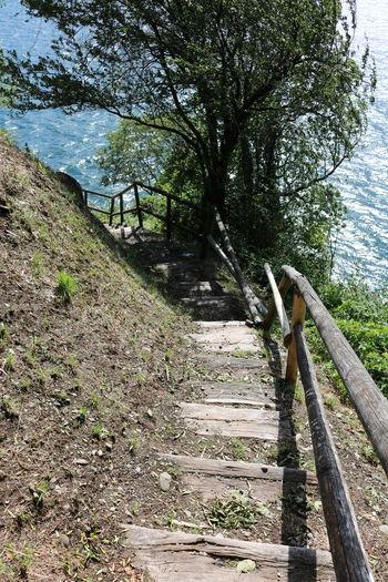 Beautiful Green Italien Italy Lagomaggiore Lake Love Nature Photo Photography