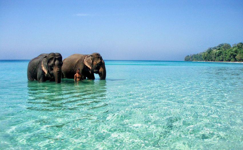 Andaman and