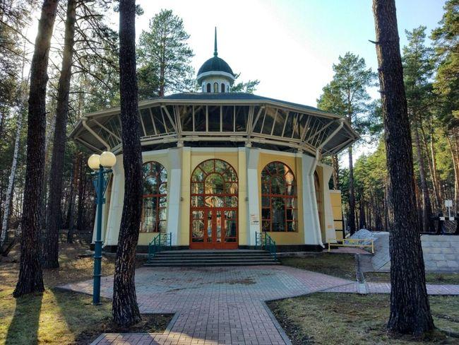 Tree Architecture Day No People Outdoors Sky Novosibirsk Новосибирск заельцовский парк The Week On EyeEem