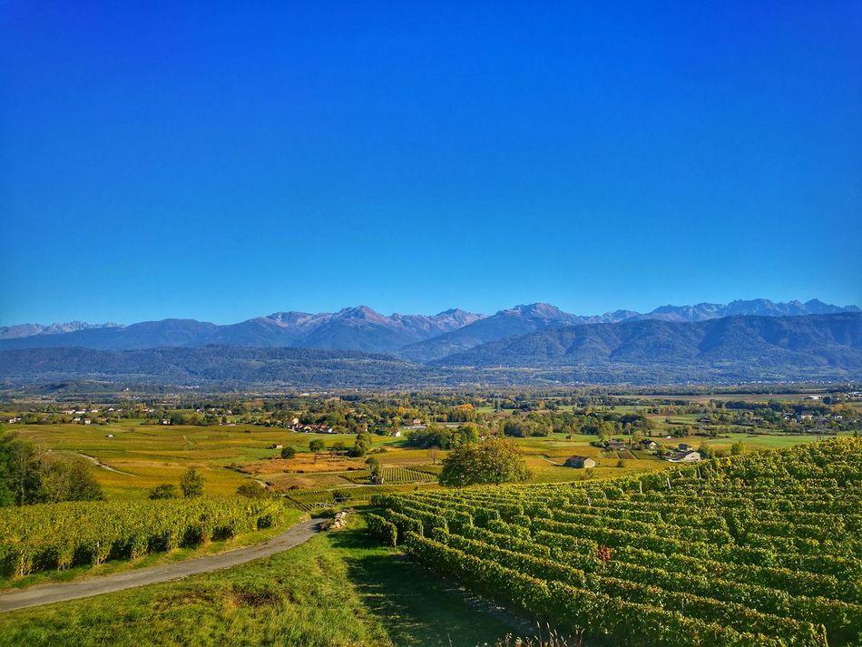 Beauty In Nature Landscape Mountain Nature Outdoors Scenics Wine Savoie