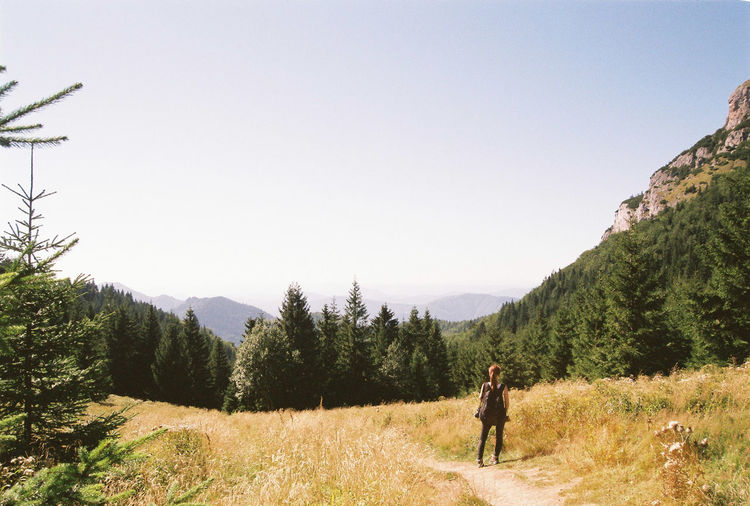 I can see now Analogue Photography Film Hiking Minolta Travel Adventure Backpack Beauty In Nature Clear Sky Exploration Forest Landscape Mountain Nature One Person Standing Tranquil Scene Tranquility