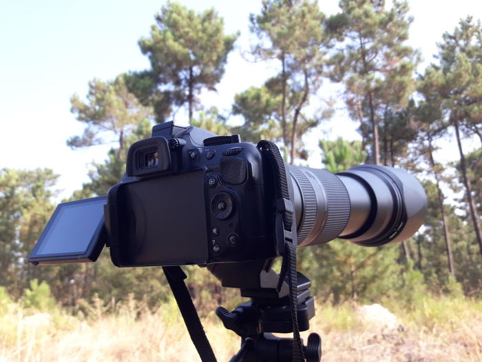Close-up of camera on field against trees