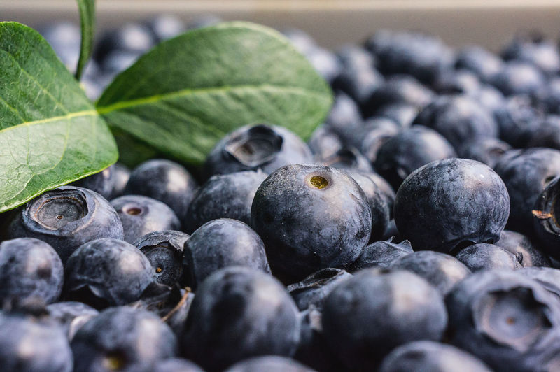Close-up of fresh blueberries