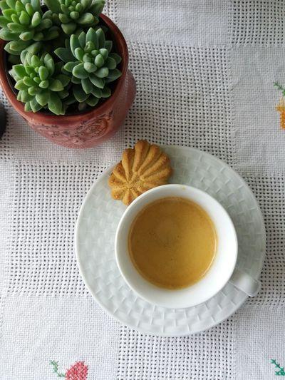 Suculenta Coffee Hot Drink Cafe