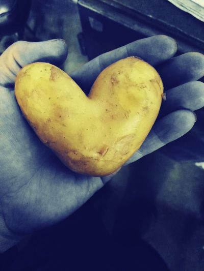 Potato Potatoes Krumpli HuaweiP8 Heart Heart ❤ Hearts Szív