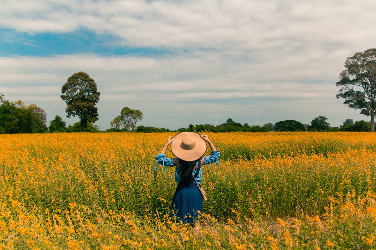 Rear view of young woman standing in yellow flower field