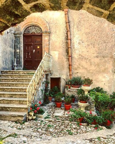 Red Sicily