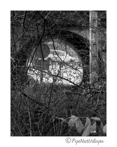 Poladesiero Black&white Blackandwhitephotography Black And White Blackandwhite Black & White Blancoynegro Blackandwhite Photography Asturias, España Outdoor Photography Nature Photography Car In Nature